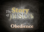 Part 25 - Obedience