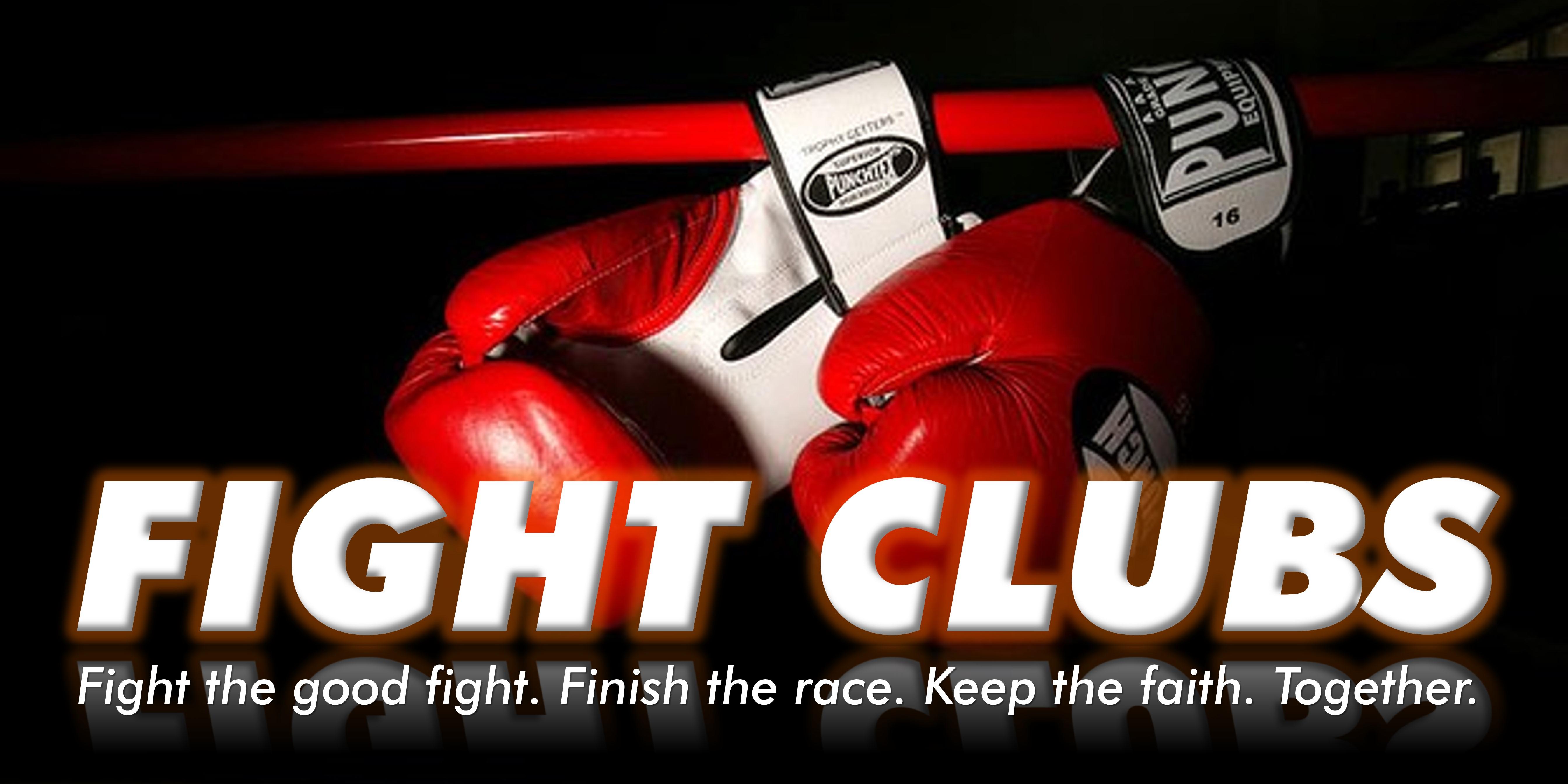 essays on fight club book