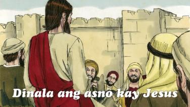 Dinala nila ang asno kay Jesus, at isinapin nila ang mga balabal nila sa likod ng asno at pinasakay si Jesus.